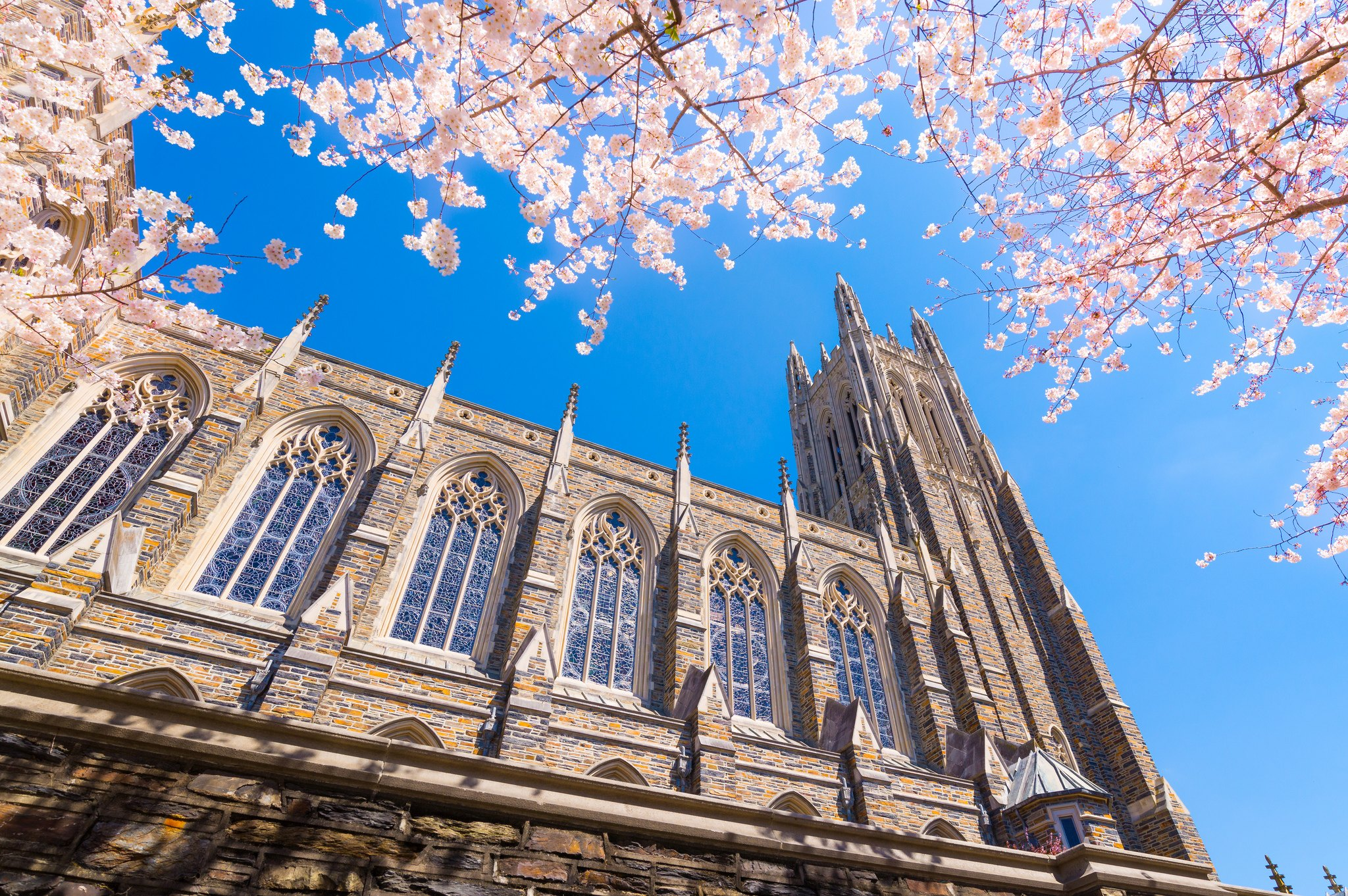 duke-university-flickr-theomania-most-beautiful-college-campuses